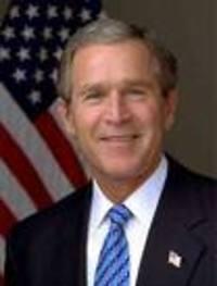 P_bush_2