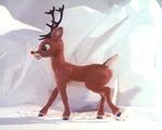 Rudolph202020raw2013